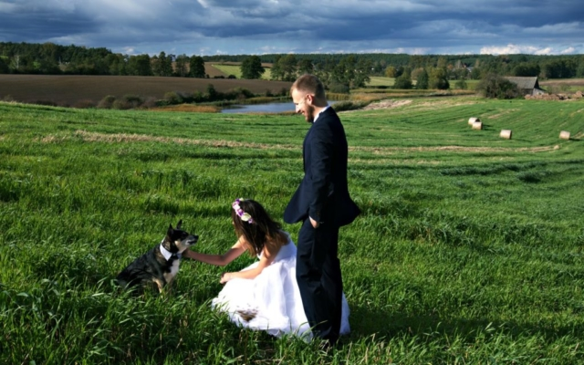ślub wesele państwo młodzi